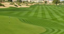 The Els Club Dubai