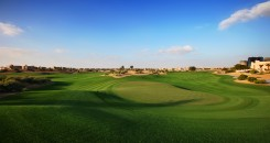 The Els Club Dubai Gallery 9th Hole