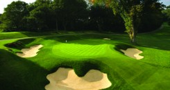Wentworth Gallery 2nd Green