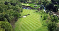 Wentworth Gallery Aerial 8th Hole